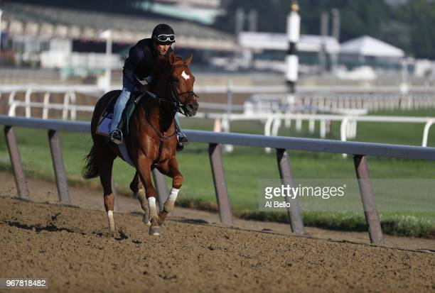 Belmont Stakes contender Hofburg trains prior to the 150th running of the Belmont Stakes at Belmont Park on June 5 2018 in Elmont New York