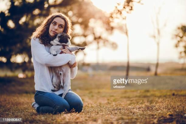 geliebter hund - november stock-fotos und bilder