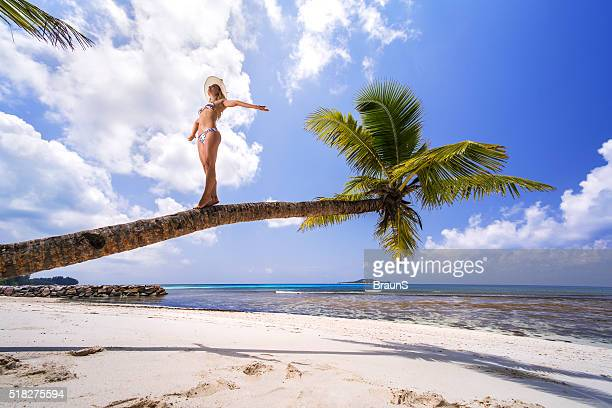 Below view of a carefree woman on a palm tree.