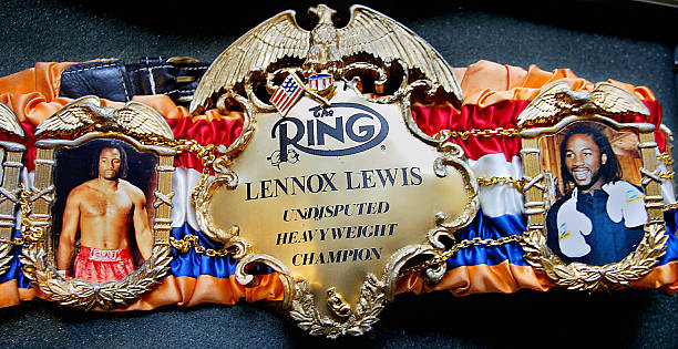 Image result for lennox lewis belts