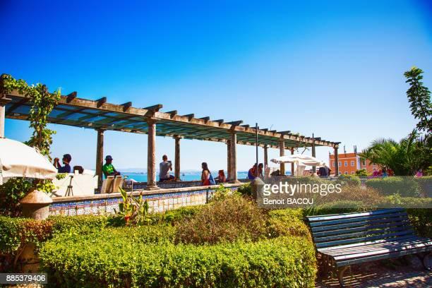 belvedere santa luzia, alfama, lisbon, portugal. - alfama stock photos and pictures