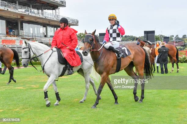 Ben Allen returns to the mounting yard aboard Ken's Dream after winning the Better Beyond Plate at Flemington Racecourse on January 13 2018 in...