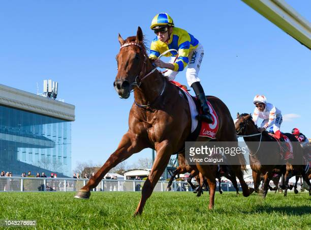 Ben Allen riding Native Soldier winning Race 6 Ladbrokes Caulfield Guineas Prelude during Melbourne Racing at Caulfield Racecourse on September 30...