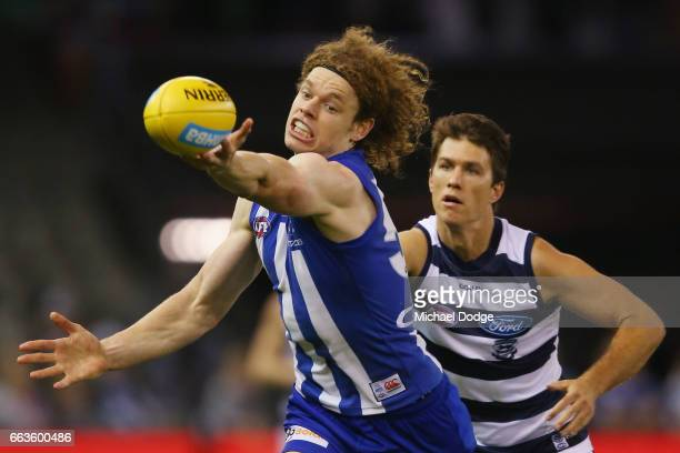 Ben Brown of the Kangaroos competes for the ball against Andrew Mackie of the Cats during the round two AFL match between the Geelong Cats and the...