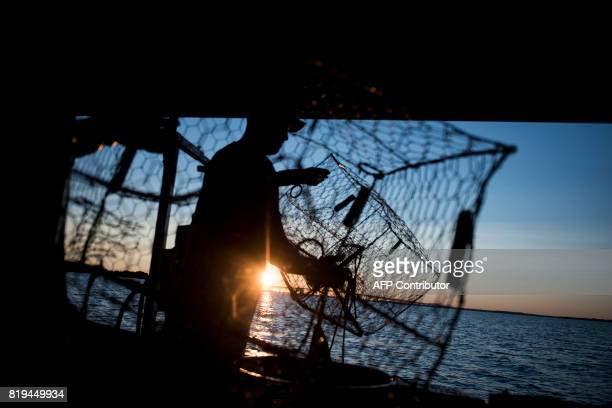 Ben Byers throws empty crab pots back into the water while crabbing on the Chesapeake Bay June 28 2017 in Annapolis Maryland A unique multimillion...