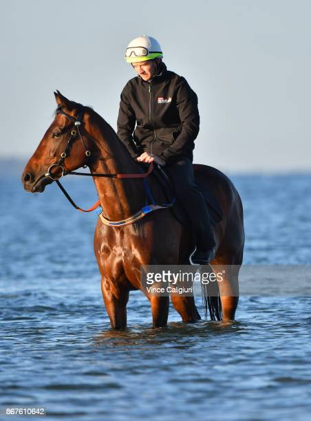 Ben Cadden riding Winx through the water at Altona Beach during a recovery session on October 29 2017 in Melbourne Australia Winx created history by...
