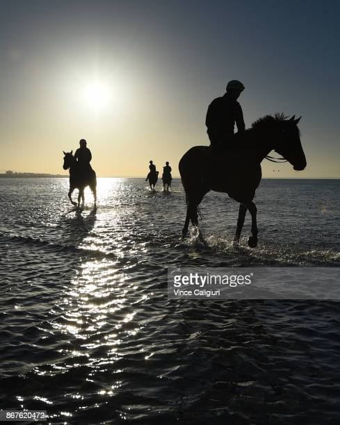 Ben Cadden riding Winx through the water at Altona Beach during a recovery session with French Emotion on October 29 2017 in Melbourne Australia Winx...