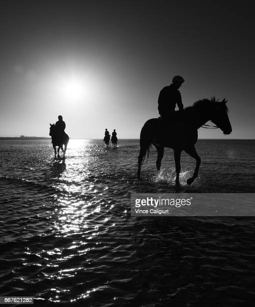 Image has been converted to black and white Ben Cadden riding Winx through the water at Altona Beach during a recovery session with French Emotion on...