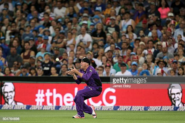 Ben Dunk of Hobart takes a catch during the Big Bash League match between the Adelaide Strikers and the Hobart Hurricanes at Adelaide Oval on January...