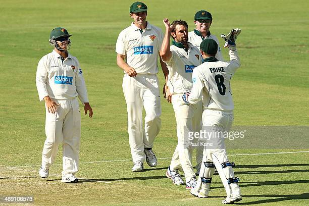 Ben Hilfenhaus of the Tigers celebrates with Tim Paine after dismissing Nathan CoulterNile of the Warriors during day two of the Sheffield Shield...