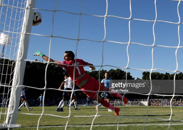 Ben Kennedy of the Mariners deflects a shot from Adam le Fondre of Sydney FC onto the post during the round 19 A-League match between Sydney FC and...