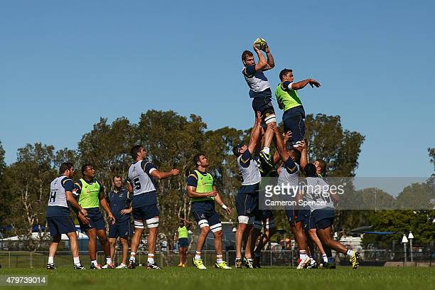 Ben McCalman of the Wallabies takes a lineout ball during an Australian Wallabies training session at Sunshine Coast Stadium on July 7 2015 in...