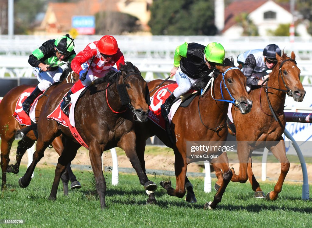 Ben Melhalm riding Crown Witness defeats Craig Williams riding Catchy in Race 5 Quezette Stakes during Melbourne Racing at Caulfield Racecourse on August 19, 2017 in Melbourne, Australia.