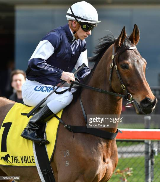 Ben Melham riding Almandin before finishing runner up in Race 5 during Melbourne Racing at Moonee Valley Racecourse on August 26 2017 in Melbourne...