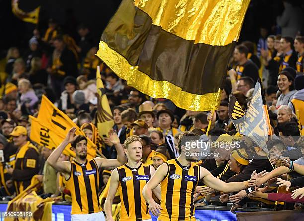 Ben Stratton James Sicily and Grant Birchall of the Hawks high fives fans after winning the round 13 AFL match between the North Melbourne Kangaroos...
