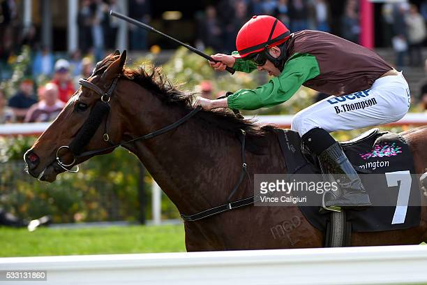 Ben Thompson riding Turnitaround wins Race 3 during Melbourne racing at Flemington Racecourse on May 21 2016 in Melbourne Australia