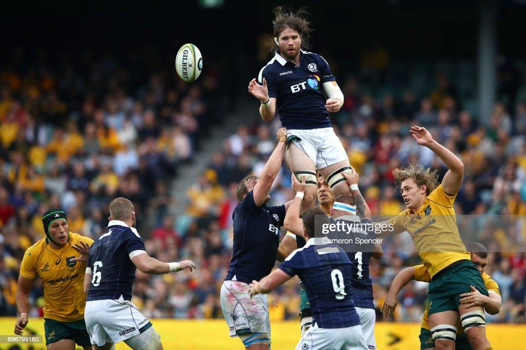 Australia v Scotland : News Photo