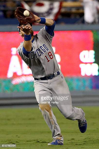 Ben Zobrist of the Chicago Cubs makes a catch in the seventh inning against the Los Angeles Dodgers in game four of the National League Championship...