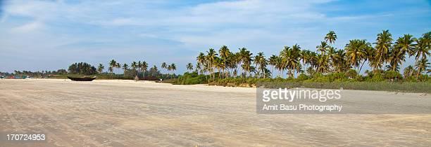 Benaulim Beach landscape, Goa, India