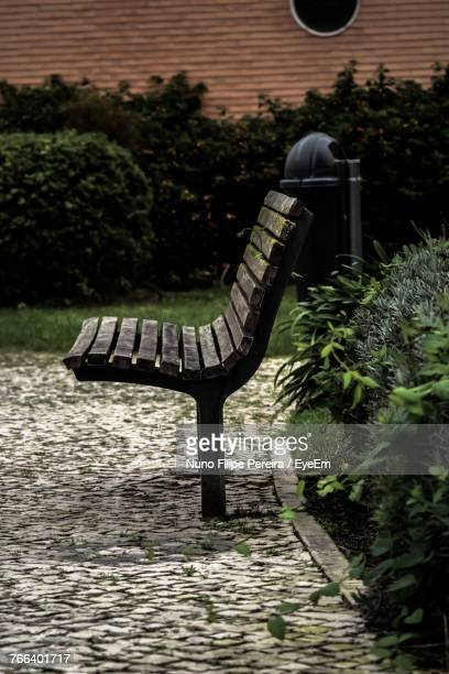 Bench Against Plants At Park