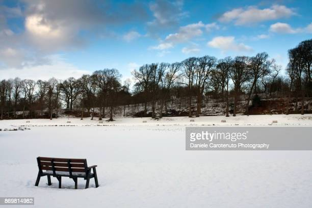 bench alone - daniele carotenuto stock pictures, royalty-free photos & images