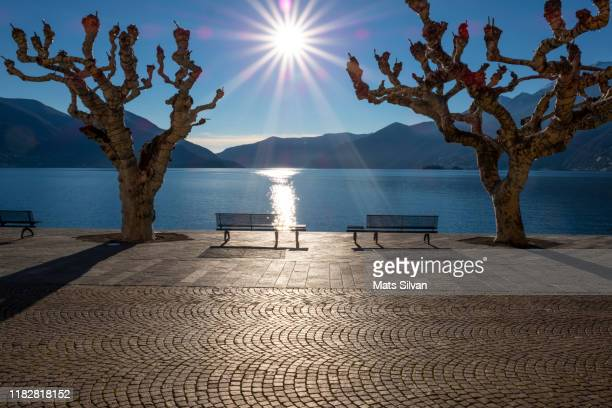 bench and bare trees on waterfront with mountain and sunbeam - kanton tessin stock-fotos und bilder