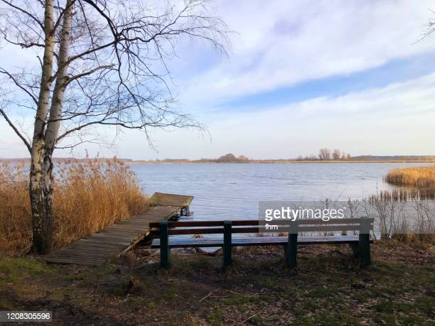 bench at a lake with a jetty - meeroever stockfoto's en -beelden