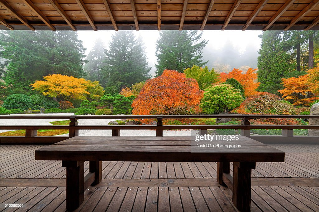 Bench at the Pavilion : Stock Photo