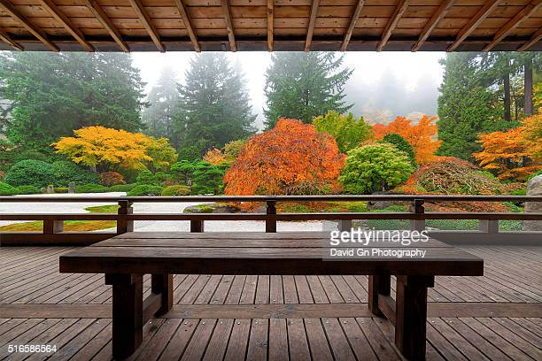 bench at the pavilion - japanese garden stock photos and pictures