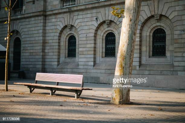a bench by a platan tree in barcelona, spain - bench stock pictures, royalty-free photos & images