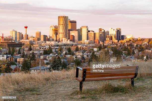 Bench for Skyline View