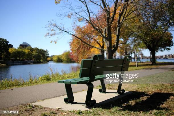 Bench in a park, Boston, Massachusetts, America, USA
