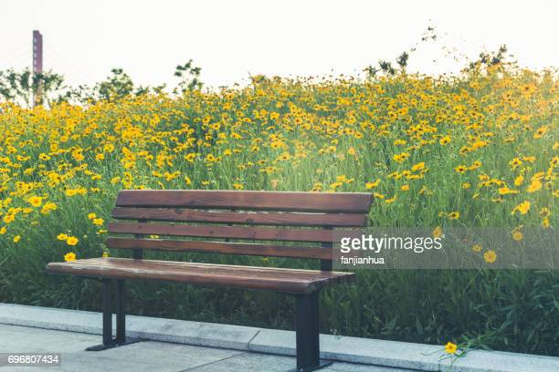 Bench in a park on sunny day