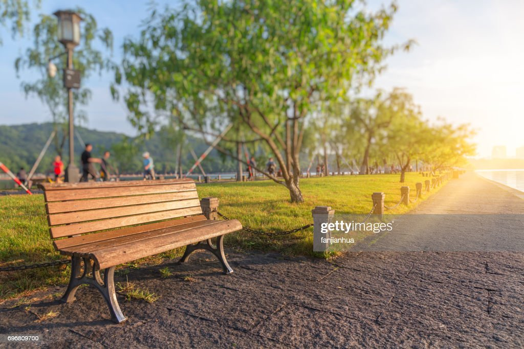 Bench In A Park On Sunny Day Stock Photo Getty Images