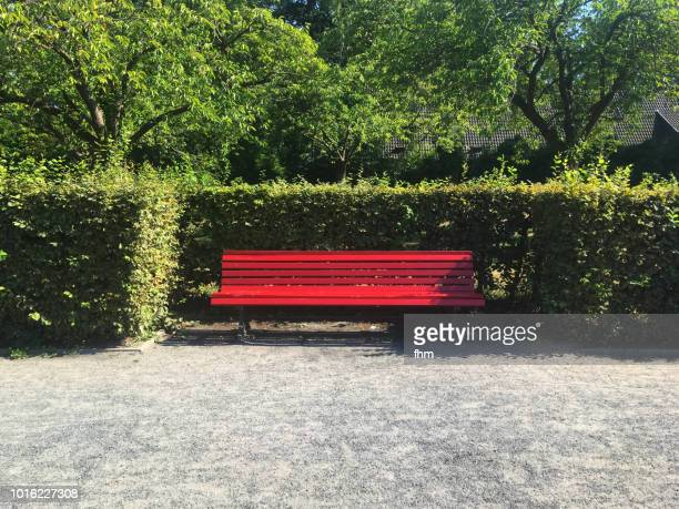 bench in a public park - park stock-fotos und bilder