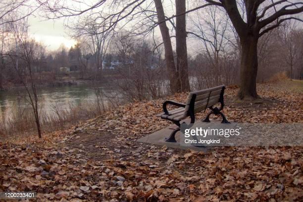 bench in autumn overlooking river - オンタリオ州 ロンドン ストックフォトと画像
