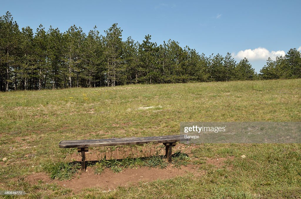 Bench in landscape : Stock Photo