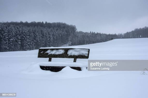 bench in snow - susanne ludwig stock pictures, royalty-free photos & images
