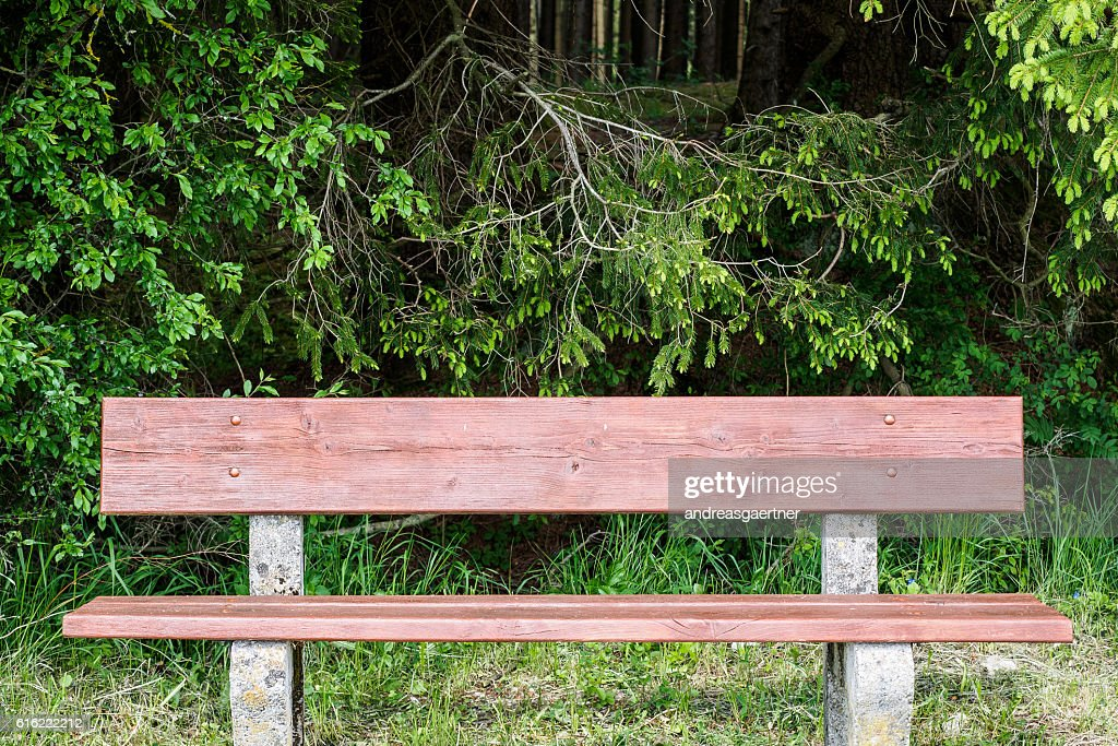 Bench in spring : Stockfoto