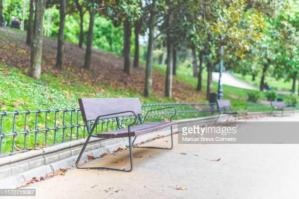 bench in the park - banco asiento fotografías e imágenes de stock
