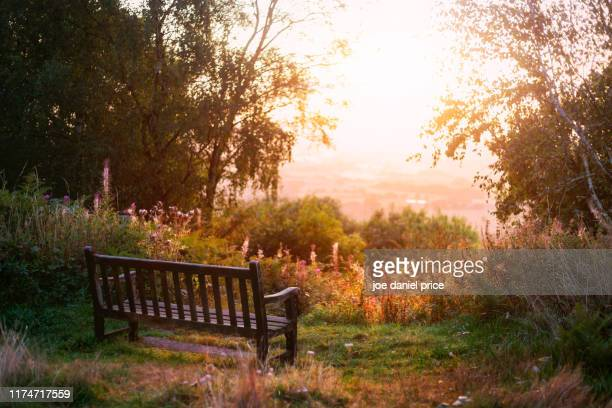 bench, malvern hills, malvern, worcestershire, england - worcestershire stock pictures, royalty-free photos & images