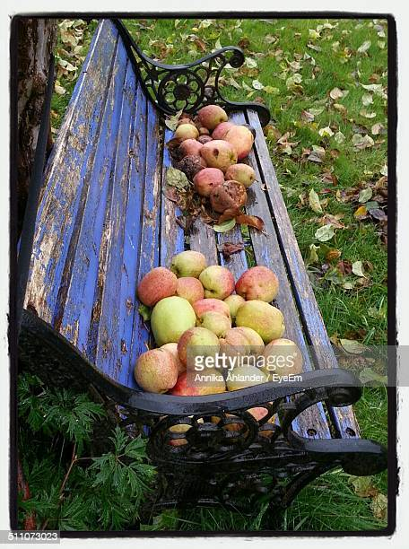 Bench on apple fruits