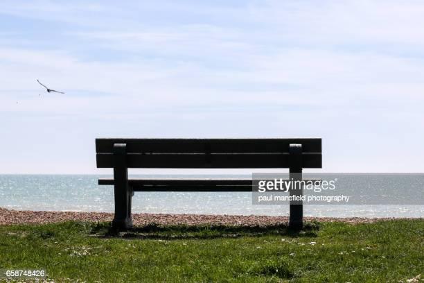 Bench on Sussex coastline