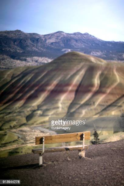 Bench overlooking the Painted Hills