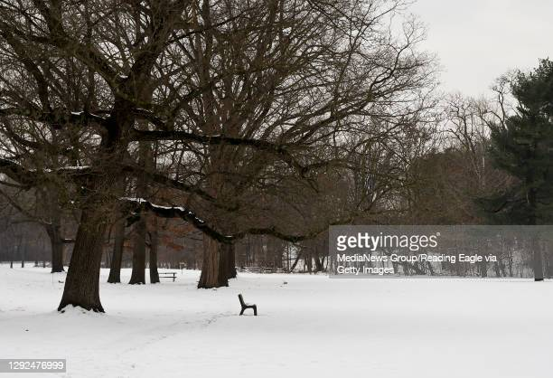 Bench under a tree on a snow covered field. At Angelica Creek Park in Reading, PA Monday afternoon December 21, 2020.