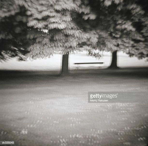 bench underneath trees in park - monty rakusen stock-fotos und bilder