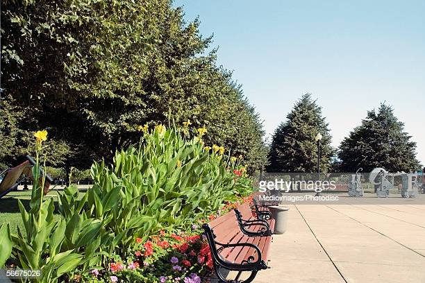 benches in a park, gateway park, chicago, illinois, usa - gladiolus stock pictures, royalty-free photos & images