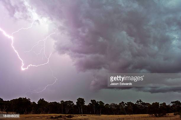 During thunder storms lightning can start fires in eucalyptus forests.