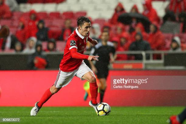 Benfica defender Alejandro Grimaldo from Spain during the Portuguese Primeira Liga match between SL Benfica and CS Maritime at Estadio da Luz on...
