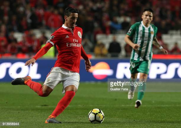 Benfica defender Andre Almeida from Portugal in action during the Primeira Liga match between SL Benfica and Rio Ave FC at Estadio da Luz on February...